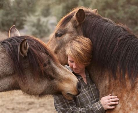 horses riding wrong animal ren hurst vegan horse episode whats michael author connection heart harren activist harm boundaries kind sanctuary