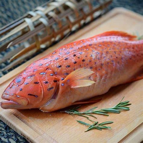 grouper fresh fish singapore ninja delivery menu