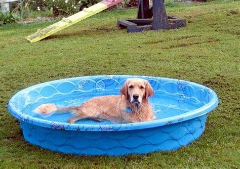Hard Plastic Pools  Hard Plastic Kiddie Pool With Slide