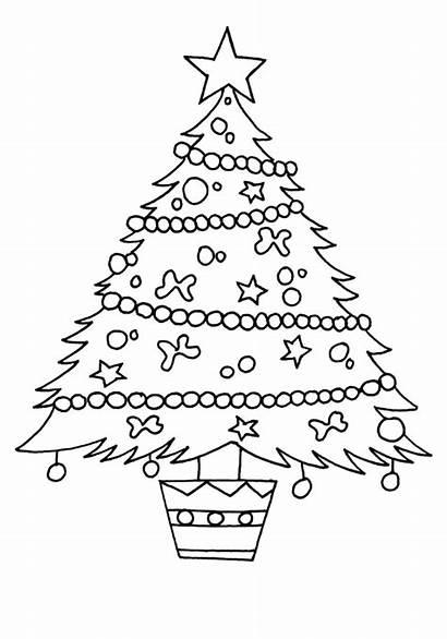 Coloring Tree Ausmalbilder Tannenbaum Weihnachtsbaum Dibujos Zum