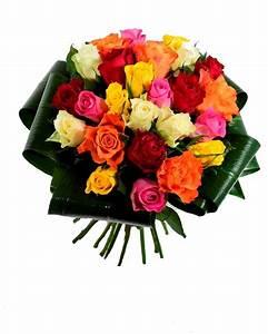 Fleur rose signification fashion designs for Quelle couleur avec le bleu 6 la signification des roses quelle couleur de roses offrir