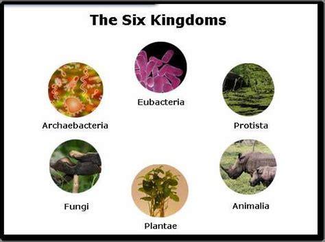 The Six Kingdoms On Emaze