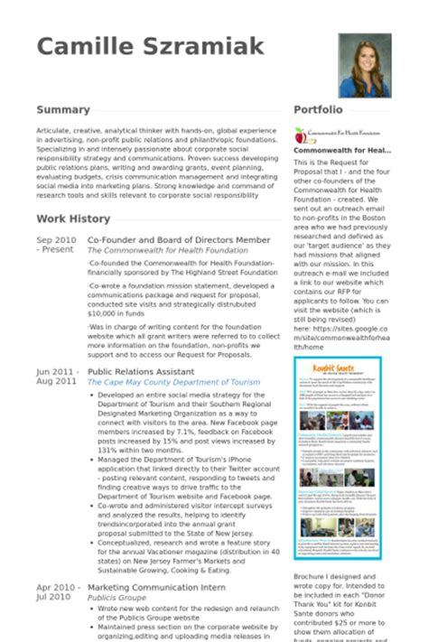 board of directors resume sles visualcv resume
