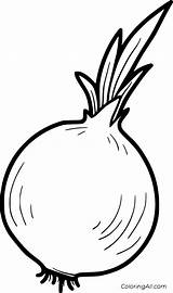 Onion Coloring Pages Vector Printable Vegetable Paper sketch template