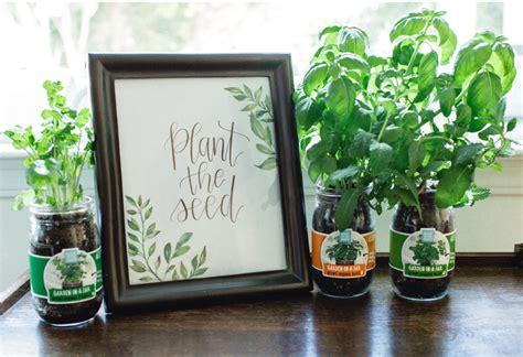 the jar gift set indoor gardening kit grow herbs