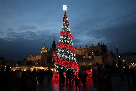 wo steht der größte natürliche weihnachtsbaum teilzeitreisender de kurzreisen und reisen f 252 r