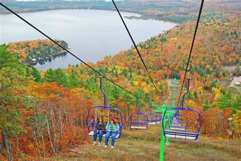 falling for michigan five ways to enjoy the fall foliage