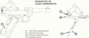 Ammunition - Stoeger Luger  22 L R