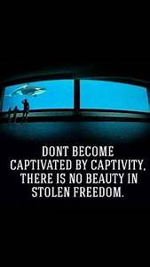 1000+ ideas abo... Freedom At Sea Quotes