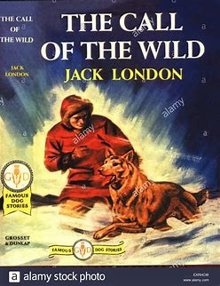 Image result for images book cover call of the wild