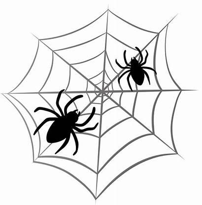 Spider Halloween Clipart Transparent Yopriceville