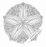 Coloring Pages Adults Mandala Complex Geometric Abstract sketch template