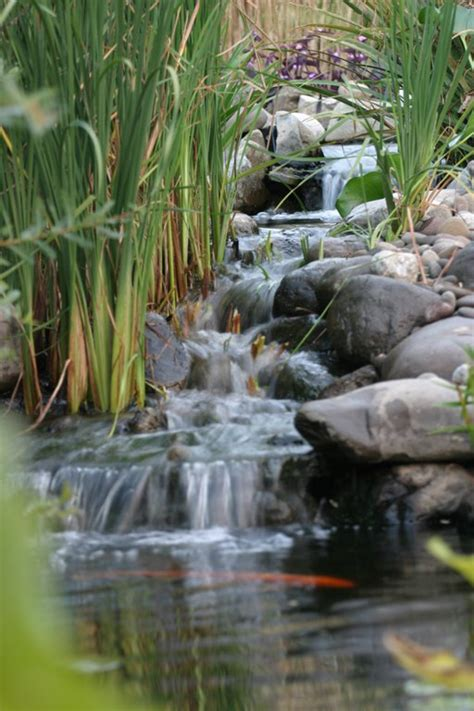 outdoor water ponds and falls avoiding waterfall problems the pond blog