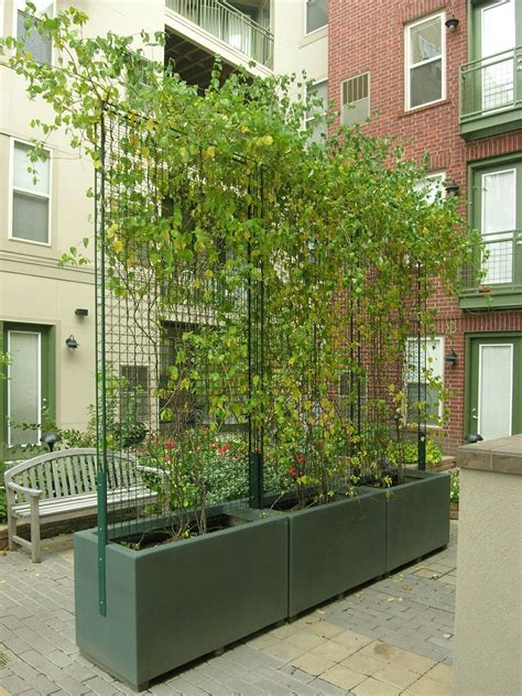 rectangle fiberglass planters  trellis minneapolis