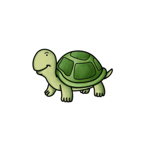 smart exchange usa small turtle