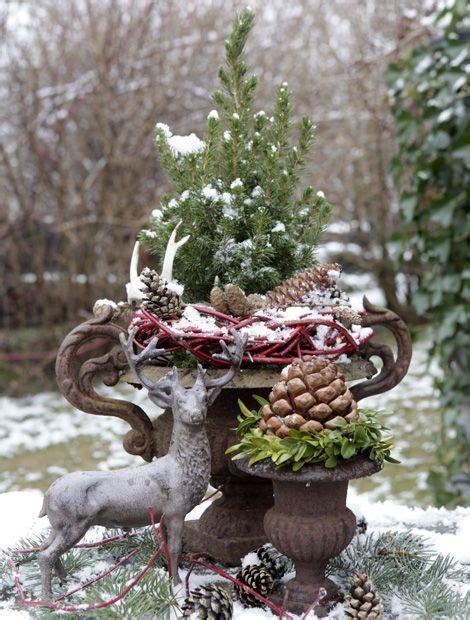 Weihnachtsdeko Garten by Blickfang Im Garten 169 Wg Florapress Garten Rustikale