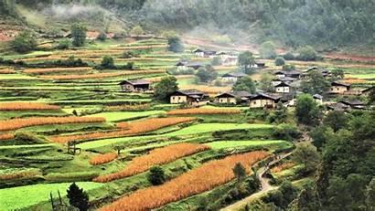 Yunnan China Village Niru Backiee Shangrila Lower