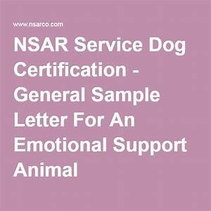 25 best ideas about emotional support animal on pinterest for Service pet letter
