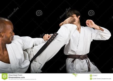 karate fight royalty  stock photography image