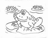 Coloring Frogs Frog Theme Cake Prince Housewarming Adult Cakecentral Replies sketch template