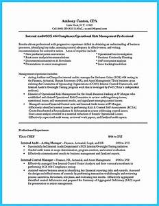 Activities Resume For College Template Awesome Understanding A Generally Accepted Auditor Resume