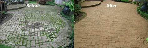 how to prevent growth between your paving stones