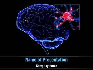 brain powerpoint templates brain powerpoint backgrounds With brain powerpoint templates free download