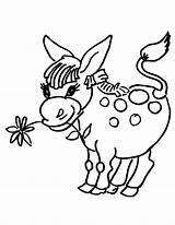 Donkey Coloring Flower Donkeys Printable Head Drawing Coloring2print sketch template