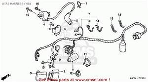 Honda Crf150f 2006  6  Usa Wire Harness   U0026 39 06