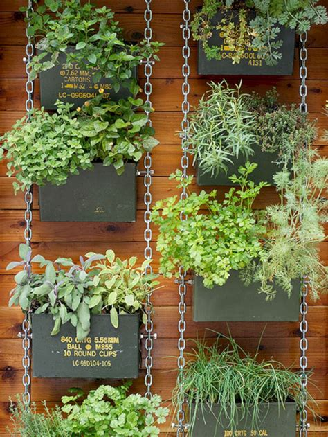 Vertical Vegetable Garden Design by Vertical Vegetable Garden Design Roomy