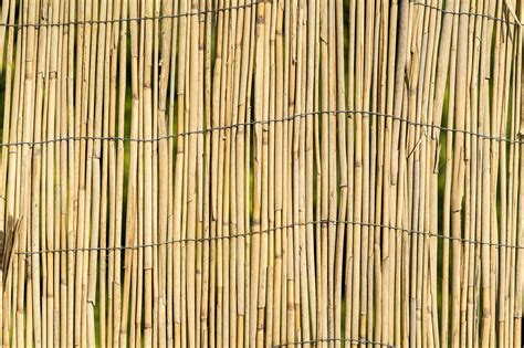 Fence Background Garden Bamboo Wall Fence Texture Background Free Stock