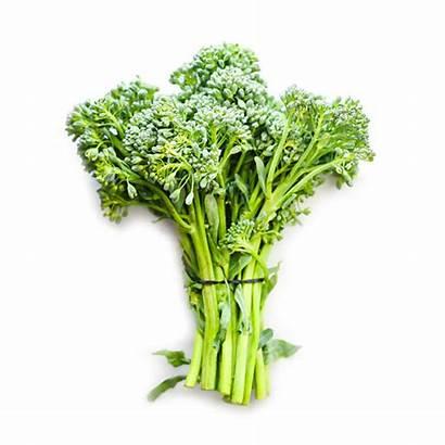 Broccolini Bunch Queenstown Invercargill Nz