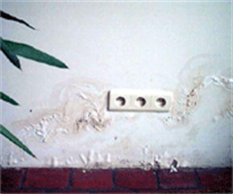 remontee capillaire mur interieur remont 233 es capillaires salp 234 tre hydrotec