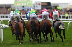 cheltenham festival racing race horse cup schedule times guide holding andy getty chase saturday results arkle leopardstown wins favourite notebook