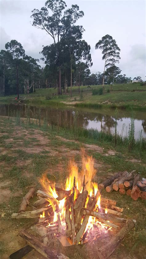 youcamp coffs harbour camping wd