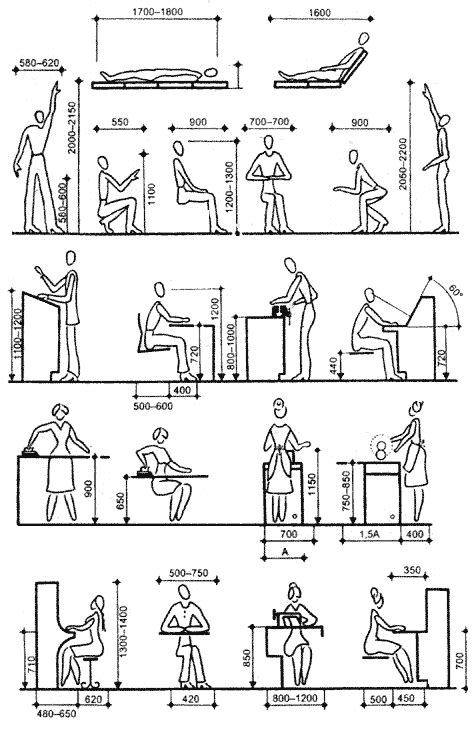 History and Basics of Anthropometry