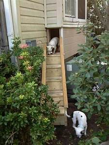 Pinterest o the worlds catalog of ideas for Hidden dog door