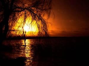 Most Beautiful Nature Photography