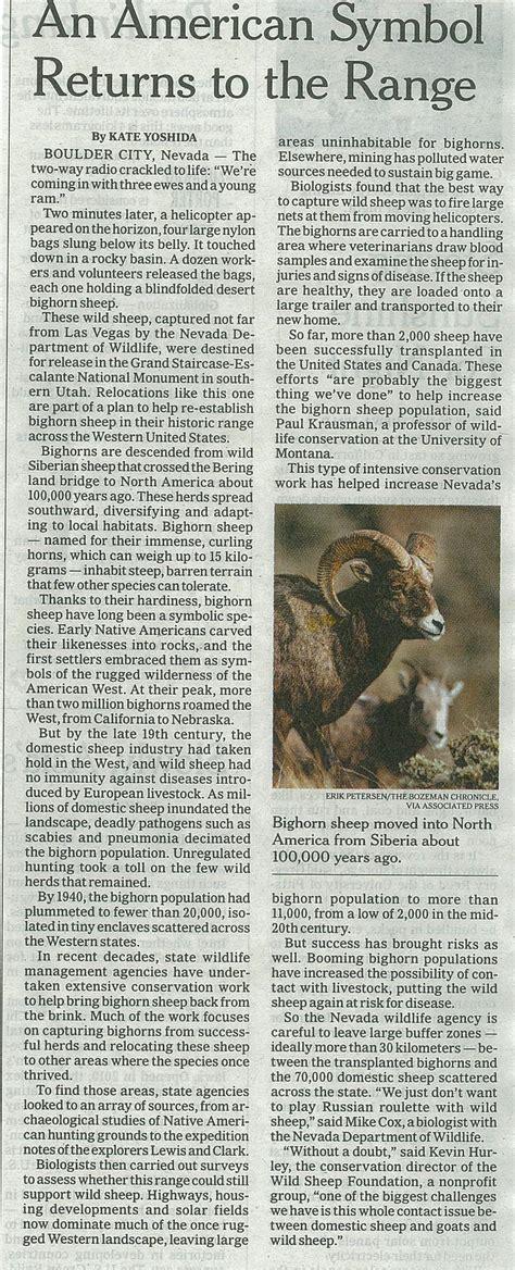 monoprix si鑒e social il ritorno della pecora selvatica delle montagne rocciose giuseppecaprotti it