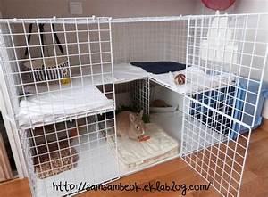 Maison Pour Lapin : une cage fait maison pour mon lapin neige pinterest ~ Premium-room.com Idées de Décoration