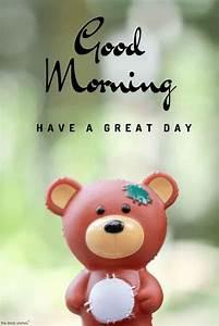 101+ Cute Good Morning Teddy Bear Images | Gud morning ...
