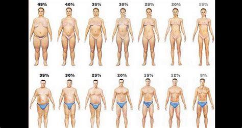 voici comment vous d 233 barrasser de la graisse du ventre rapidement