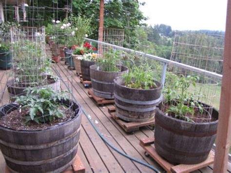 deck gardening containers layout for small vegetable garden design bookmark 20835
