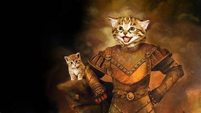 Cat Funny Backgrounds 1080 1920