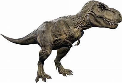 Rex Tyrannosaurus Jurassic Evolution Park Dinosaur Spinosaurus
