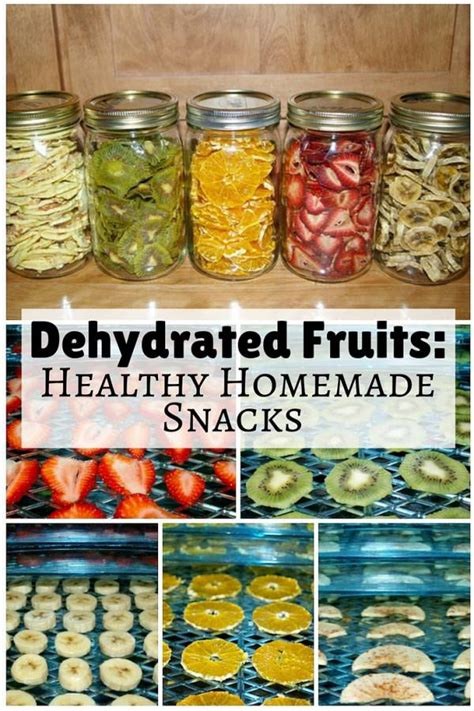 dehydrated fruits healthy homemade snacks  budget diet