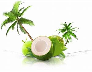 Coconut Kingdom Gift Of Nature Organic Coconut Water