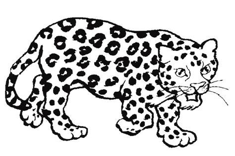 Kleurplaat Koe Zonder Vlekken by Jaguar Met Vlekken Thema Vlekken En Strepen