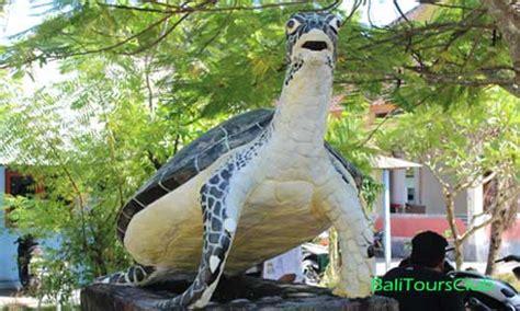 konservasi penyu  pulau serangan bali