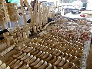Reporting on the Ivory Trade in Angola: Will the Nation's ...